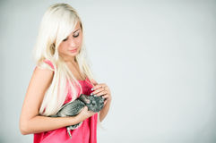 A girl and a chinchilla Stock Photography