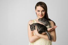 Girl with chinchillas Royalty Free Stock Images