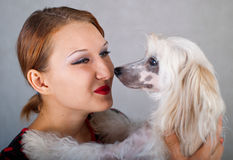 Girl and chinese crested dog. The beautiful girl and chinese crested dog on grey background. Shallow DOF, focus on girl royalty free stock image