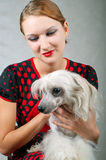 Girl and chinese crested dog. The beautiful girl and chinese crested dog on grey background. Shallow DOF, focus on girl stock photo