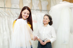 Girl chooses bridal veil at shop of wedding fashion. Consultant helps her Stock Photography