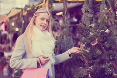 Girl chooses a Christmas tree Royalty Free Stock Images