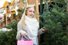 Girl chooses a Christmas tree Stock Image