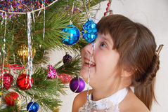 The girl at Christmas fur-tree. Stock Image