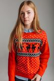 Girl in a Christmas or new year sweater in the Studio holding a Cup of flavored coffee. place for text Christmas mood. royalty free stock images