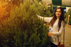 Girl and Christmas tree Stock Images