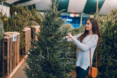 Girl and Christmas tree Royalty Free Stock Images