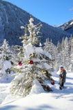 Girl and christmas tree Stock Photo