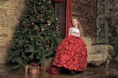 Girl  at the Christmas tree Stock Photography