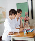 Girl With Classmate At Desk In Science Lab. Portrait of teenage girl with classmate at desk in science lab royalty free stock images