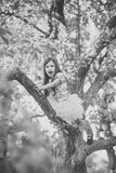 Girl climb on tree. Active leisure of skilful female child outdoor, big tree in park Royalty Free Stock Photography