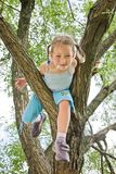 Girl is climbing on a tree Royalty Free Stock Photos