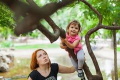 Girl climbing tree royalty free stock photography