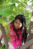 Girl Climbing Tree Stock Image