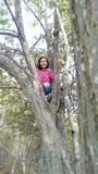 Girl climbing a tree Stock Photos