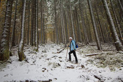 Girl climbs the forest trail in the snow Stock Image