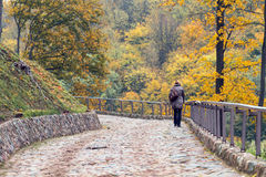 Girl climbs up the hill in the park in autumn Royalty Free Stock Photography