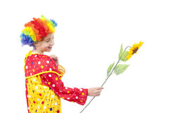 Girl in clown costume wit sunflower Stock Photos