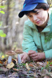 Girl collect mushroom on forest. Girl collect brown cap boletus on forest royalty free stock photo