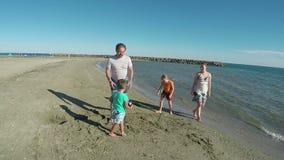 Girl collect seashells near the seashore stock footage
