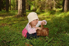 The girl collecting berries. The girl in the forest, collecting berries in a basket Royalty Free Stock Photography