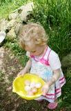 Girl collecting eggs. Stock Photos
