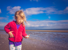 Girl collecting mussels Stock Photography