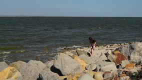 Girl collecting seashells on the beach stock video footage