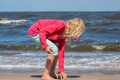 Girl collecting seashells Stock Photography