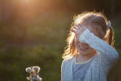 Girl collects flowers childhood. Little girl cute collects dandelion flowers at sunset sun in a field. covered her face with her hand, laughs. concept of summer Royalty Free Stock Image