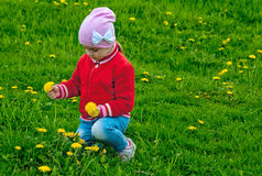 Girl collects flowers Royalty Free Stock Photos