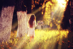 Girl collects flowers Stock Photos
