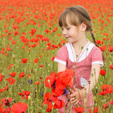 A girl collects poppy flowers Stock Images