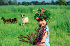 Girl collects the summer wildflowers Royalty Free Stock Images