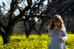 Girl in colorful meadow. Three year old girl smelling a yellow flower in a field of mustard and flowers (spring Stock Photography