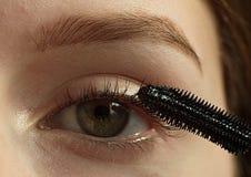 Girl coloring lashes mascara. Girl coloring eyelashes with black ink closeup Royalty Free Stock Photo