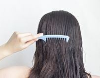 Girl combs long black hair comb, rear view, white background attractive royalty free stock image