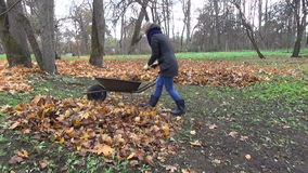 Girl compost wheelbarow stock video