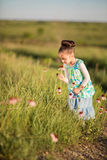 Girl and coneflowers Royalty Free Stock Photos