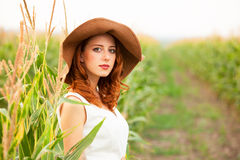 Girl at corn field Royalty Free Stock Image