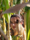 Girl in Corn Maze. A young girl trying to find way out of corn maze Stock Photos