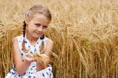 Girl in cornfield. Young girl in country at cornfield. Focus on hands stock photo