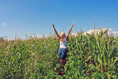 Girl in a cornfield. A beautiful young woman feeling free, rear view Royalty Free Stock Photos