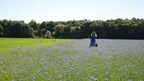 Girl cornflower field Stock Images