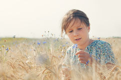 Girl with a cornflower Stock Photography