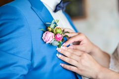 Girl corrects bride groom boutonniere. flowers Advertising.Wedding. Bride corrects groom boutonniere at their wedding. Close-up d stock images