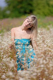 The girl costs in a blossoming field. The beautiful girl costs in a dress in the middle of a blossoming field Royalty Free Stock Images