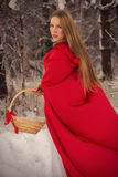 Girl in costume Little Red Riding Hood with dog like a wolf Stock Photos