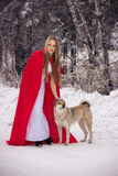 Girl in costume Little Red Riding Hood with dog like a wolf Royalty Free Stock Image