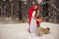 Girl in costume Little Red Riding Hood with dog like a wolf Royalty Free Stock Photos